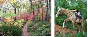 Trail Skills